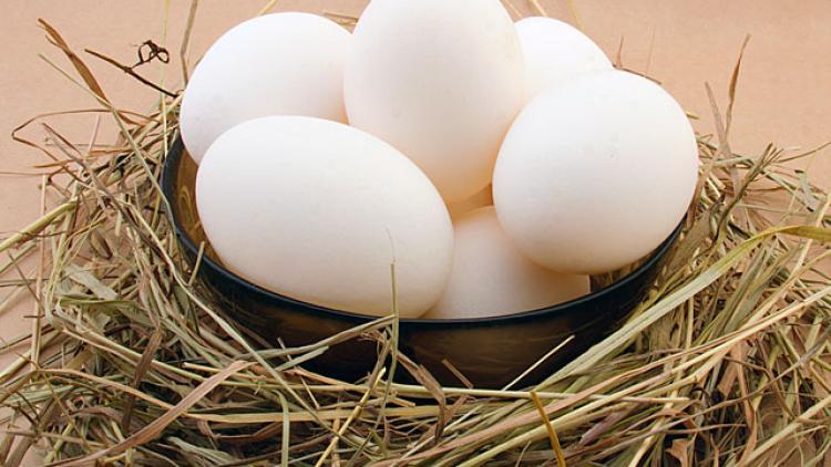 minkštai virtas kiaušinis ir hipertenzija