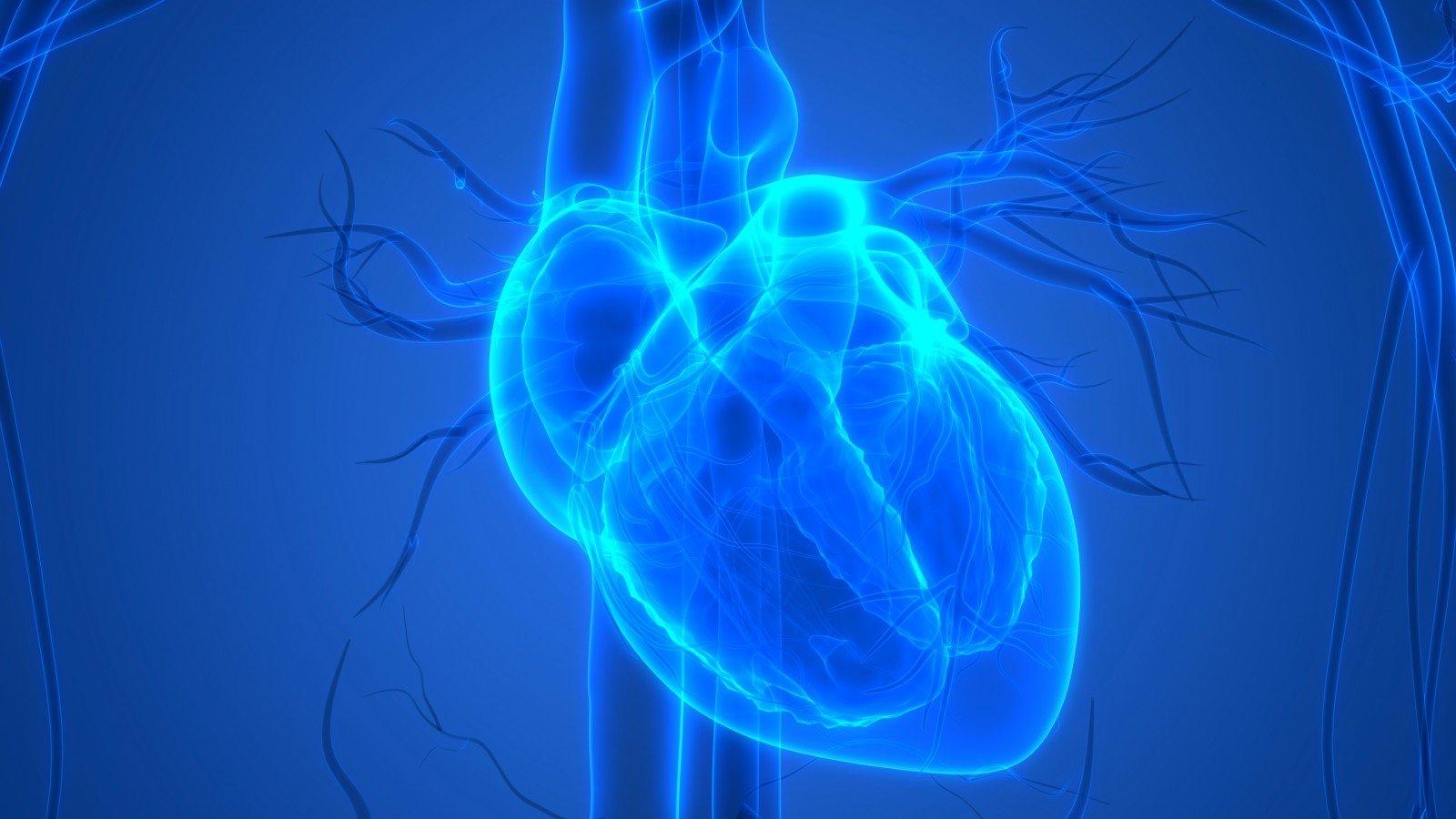 tikrindamas savo širdies sveikatą