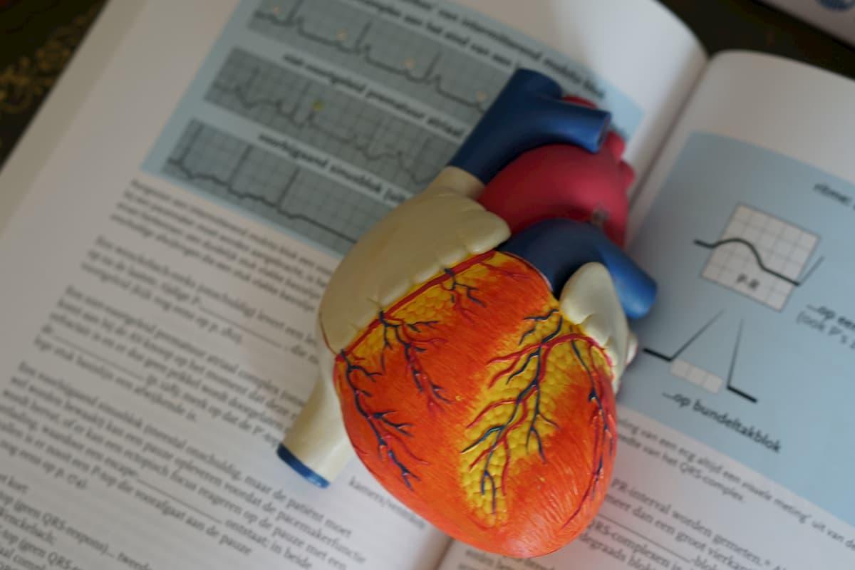 1 stadijos hipertenziją galima išgydyti