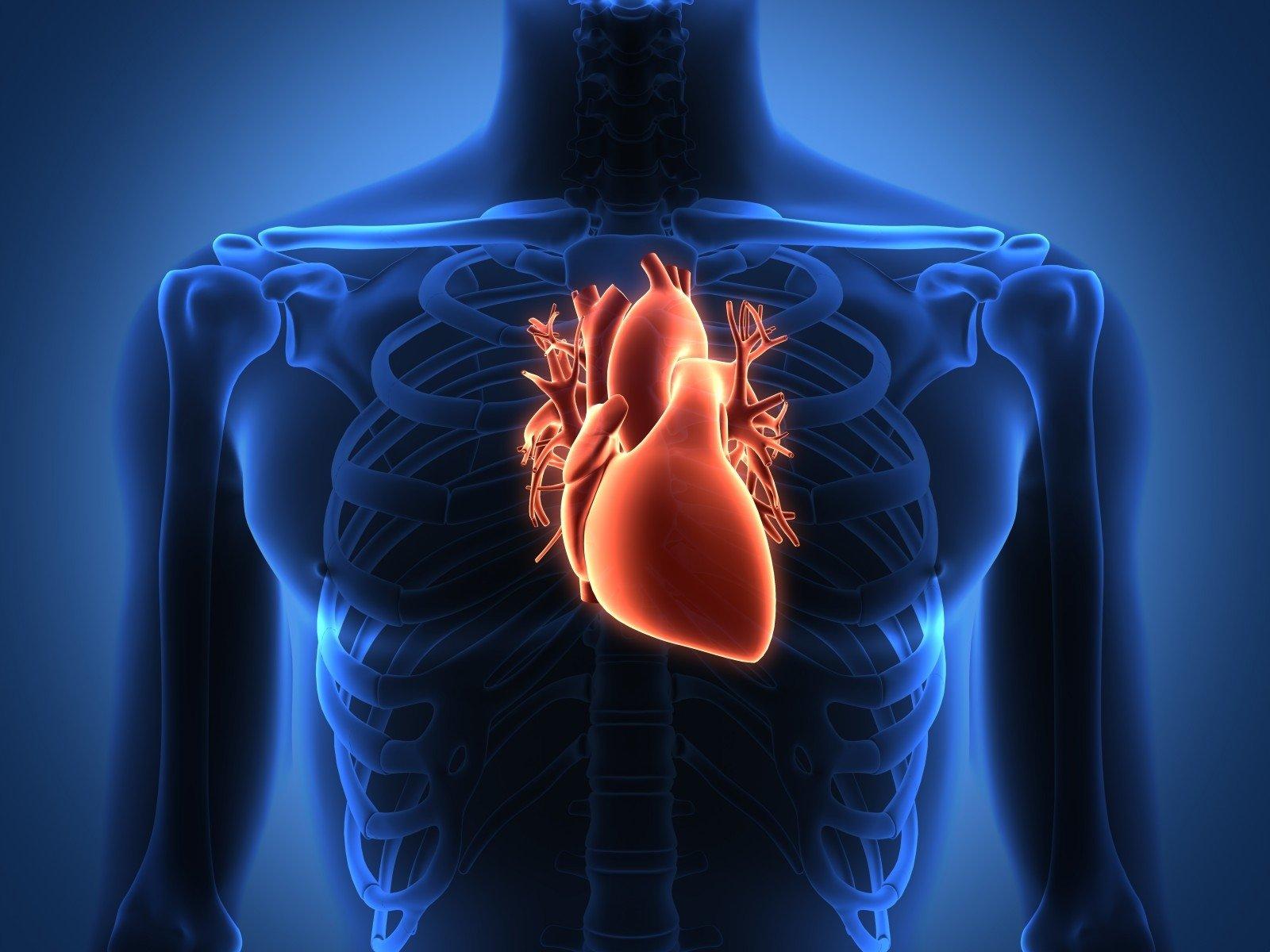 didžiausia širdies sveikata)