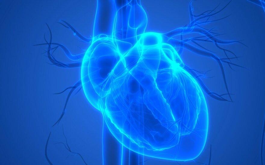 baltos zinfandel širdies sveikata