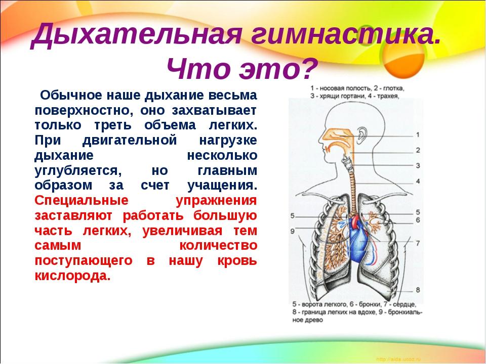 pilvo kvėpavimas su hipertenzija