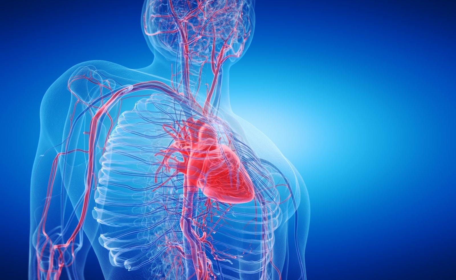 ką vartoti esant hipertenzijai ir tachikardijai