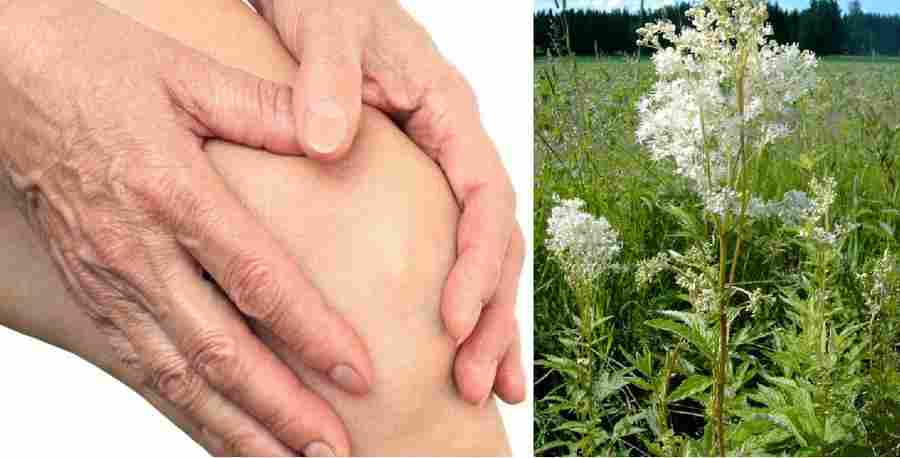 kaip amžinai nugalėti hipertenziją liaudies gimdos kaklelio apykaklės zonos masažas su hipertenzija