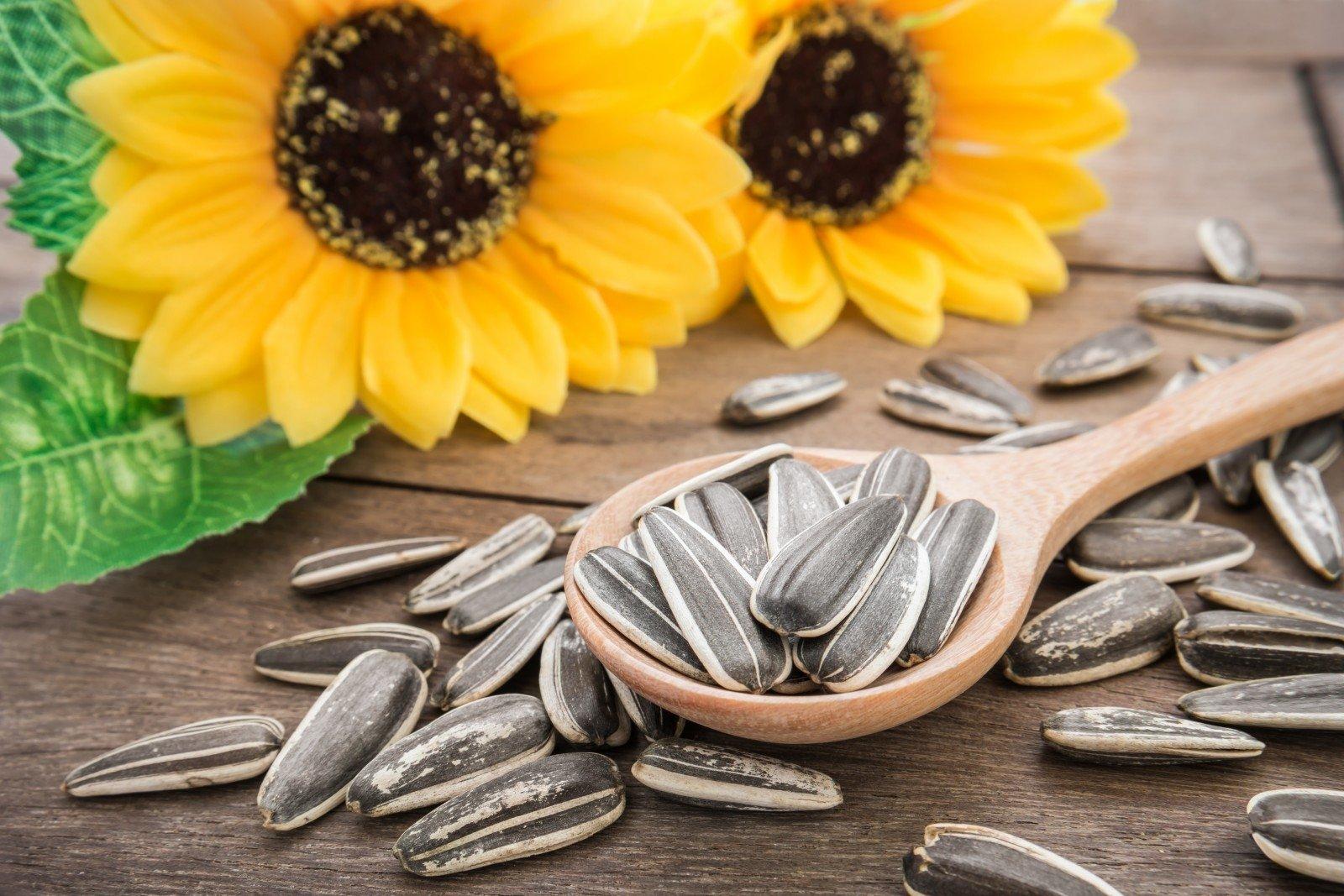 saulėgrąžų sėklos nuo hipertenzijos)