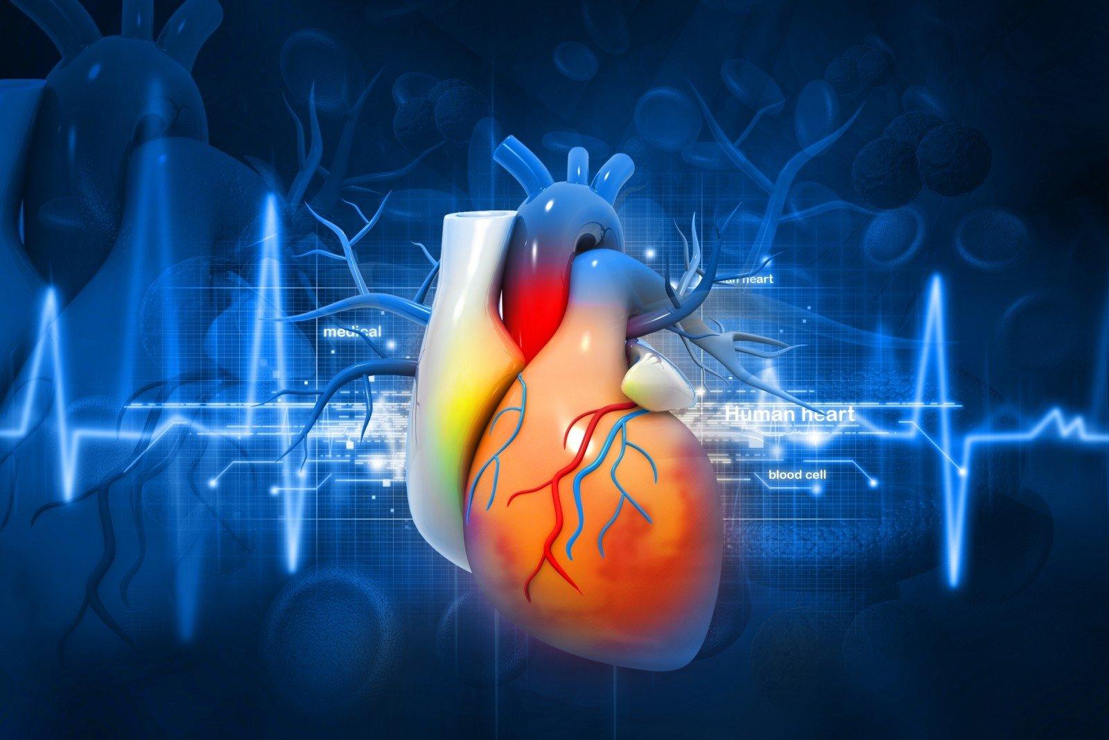 tikrindamas savo širdies sveikatą)
