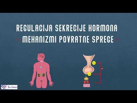 helba ir hipertenzija