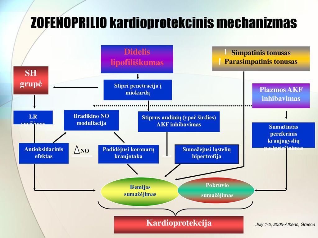 hipertenzijos stadijos stadijos rizika