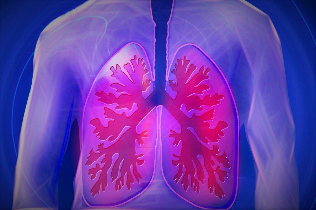 hipertenzijos gydymas moliūgais hipertenzija gydo vaistus