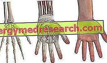 hipertenzija ir riešo išsiplėtimas)