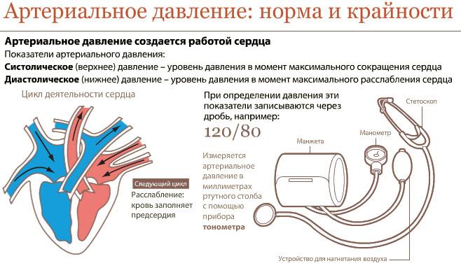 sergant hipertenzija, slėgis nuolat didėja ziziphus gydo hipertenziją nuo