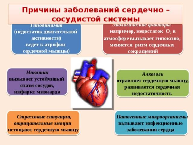 hipertenzijos gydymo prevencija liaudies gynimo priemonėmis