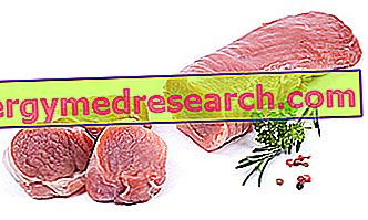 arklio riebalai nuo hipertenzijos)