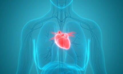 sveikatos širdies priepuolio simptomai moterims