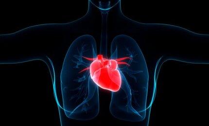 hipertenzija jauniems žmonėms, ką daryti kas įmanoma, kas ne su hipertenzija