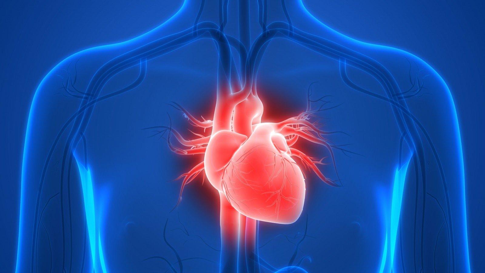 Negydomas širdies nepakankamumas tampa lėtu žudiku