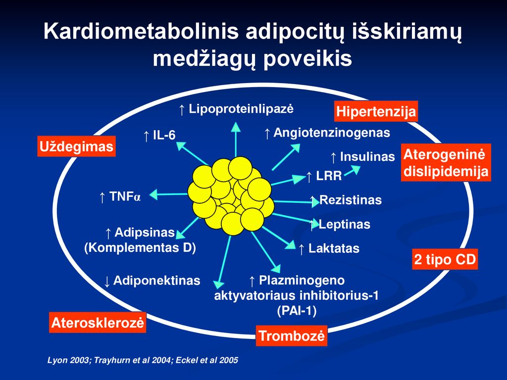 kas yra 2 tipo hipertenzija