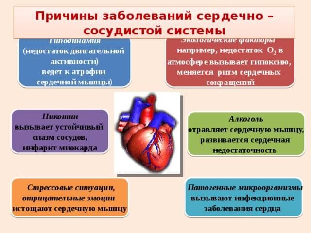 septynios tinktūros liaudies vaistas nuo hipertenzijos)
