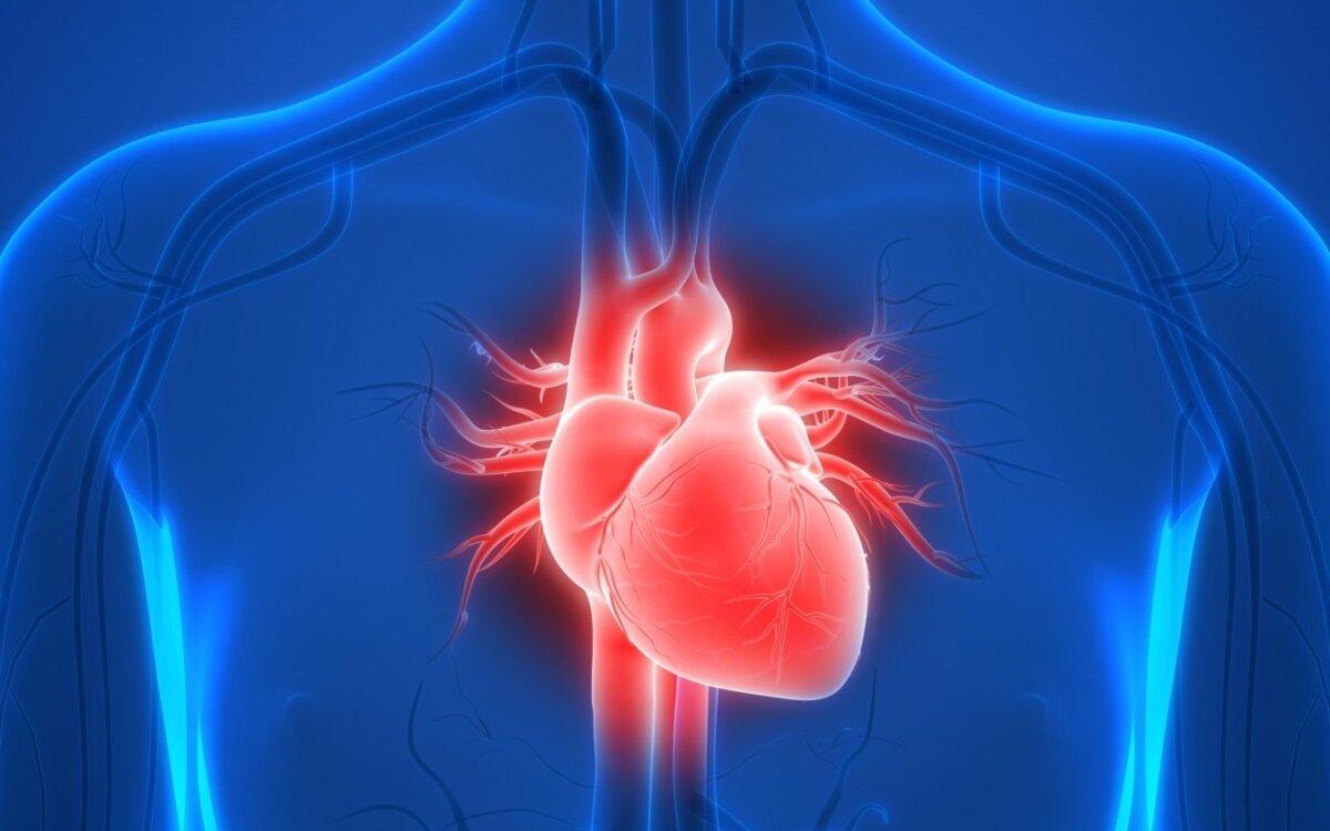 Širdies nepakankamumas: kaip rūpintis savimi?