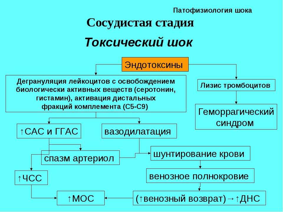 hipertenzija, kas yra viršutinis ir apatinis slėgis)