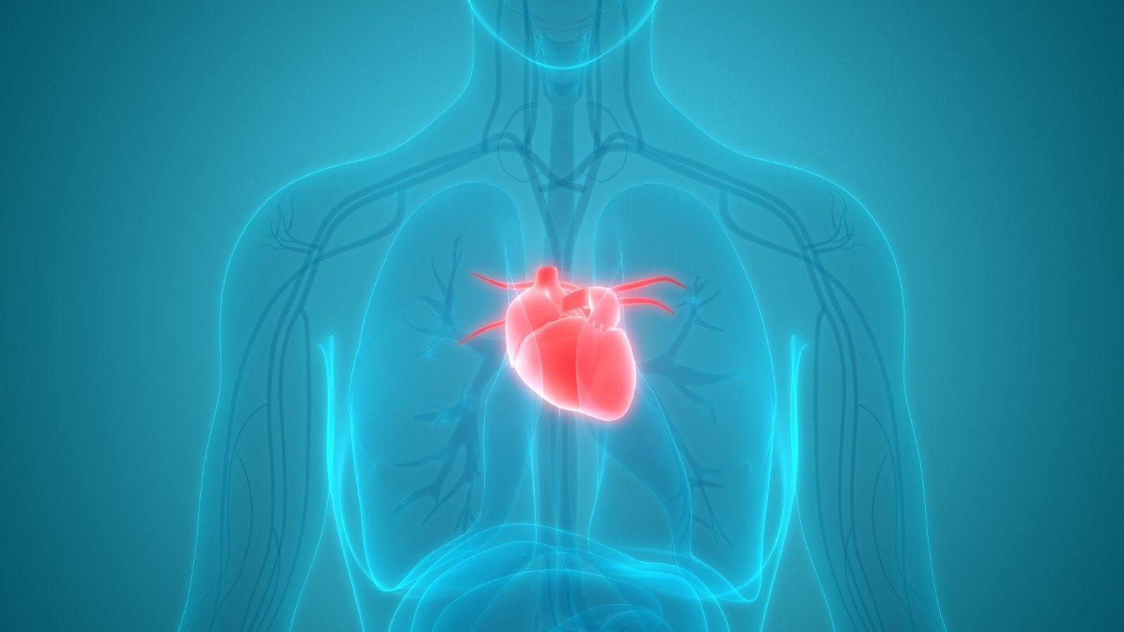 Cholesterolio kiekis normalus, o ištiko infarktas – kas kaltas?