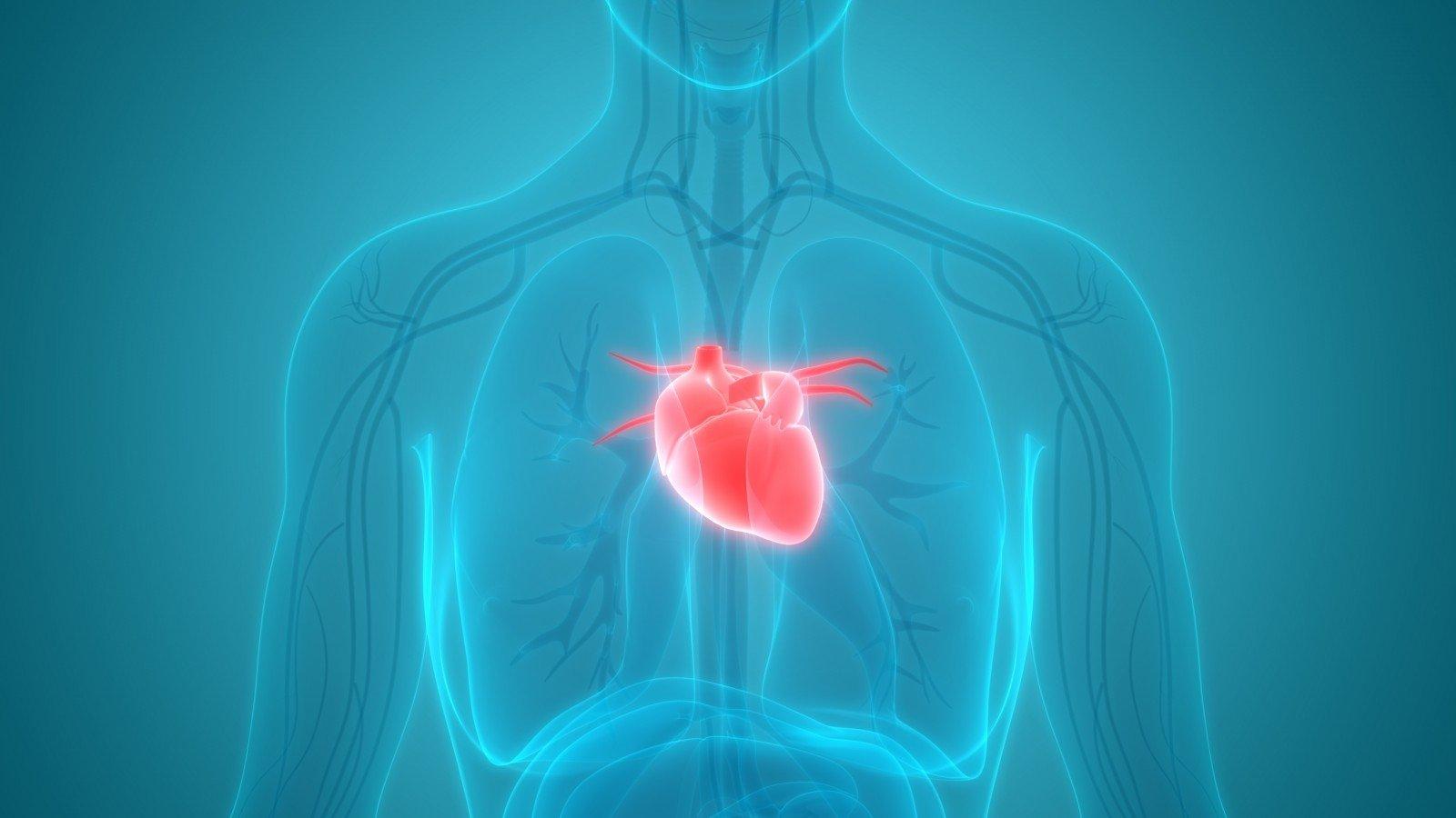 širdies išemija ir hipertenzija