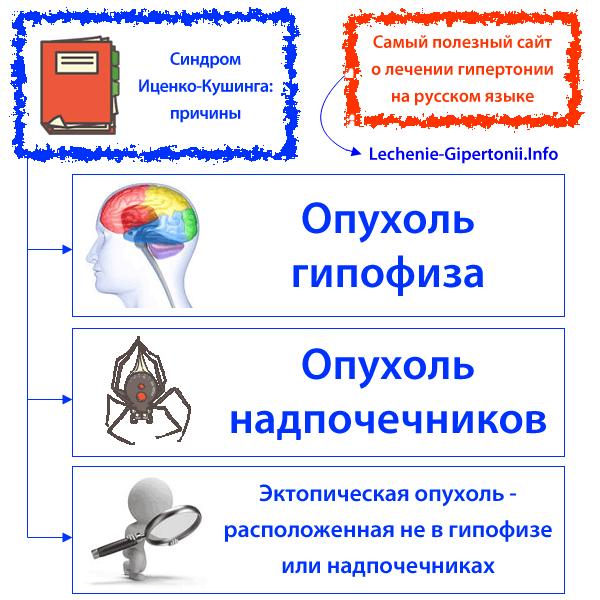 hipertermija su hipertenzija)