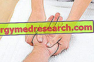 MASAŽO TERAPIJOS SPECIALISTAS. Refleksoterapija - kursai, seminarai, mokymai
