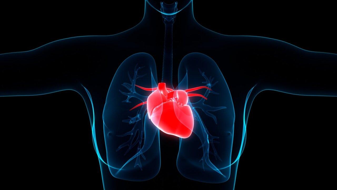 lengva hipertenzija kaip gydyti